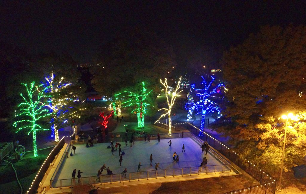 Ice and Lights : Winter Village at Cameron Run (Credit: NOVA Parks)